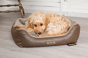 Memory Foam Dog Bed