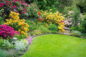 five handy tips for your spring garden