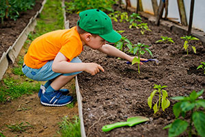 A little boy outside enjoying gardening