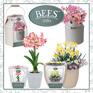 G Plants' new BEES gifts range.