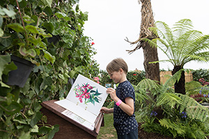 Boy exploring book at RHS Flower Show at Tatton Park 2017