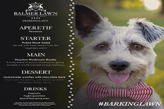 Balmer Lawn launches a new 'Barking Lawn' menu for its furry friends