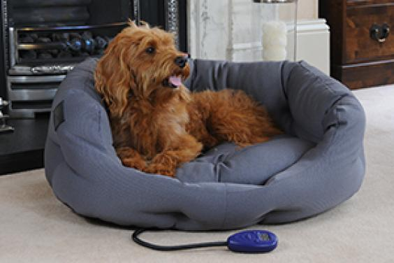 Hot dog pet products - heated dog beds