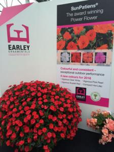 Earley Ornamentals stand at Four Oaks 2015