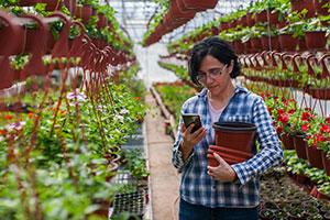 5 ways to financially improve your landscaping business - a woman on phone in plant nursery